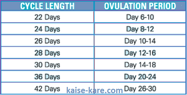 ovulation period time table in hindi