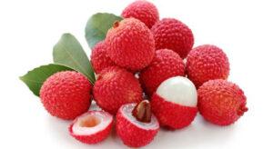 लीची फल खाने के फायदे हिंदी में