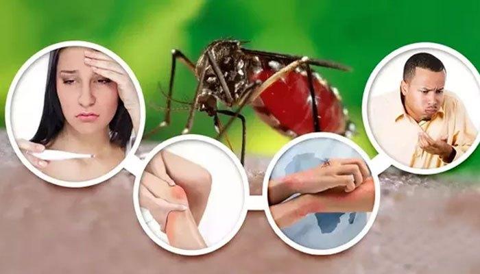डेंगू के घरेलू उपचार