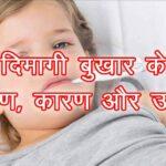 दिमागी बुखार का इलाज हिंदी में जानकारी