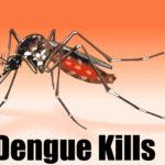 डेंगू के लक्षण घरेलु उपचार और बचने का तरीका