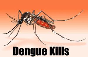 डेंगू के लक्षण,बचाव और इसका घरेलू उपचार