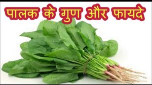 पालक के गुण सब्जी खाने के फायदे Benefits of Spinach in Hindi