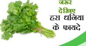 हरा धनिया के गुण हिंदी में
