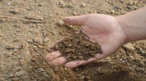 मिट्टी के उपयोग