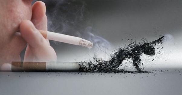 सिगरेट नहीं छोड़ी तो क्या होगा